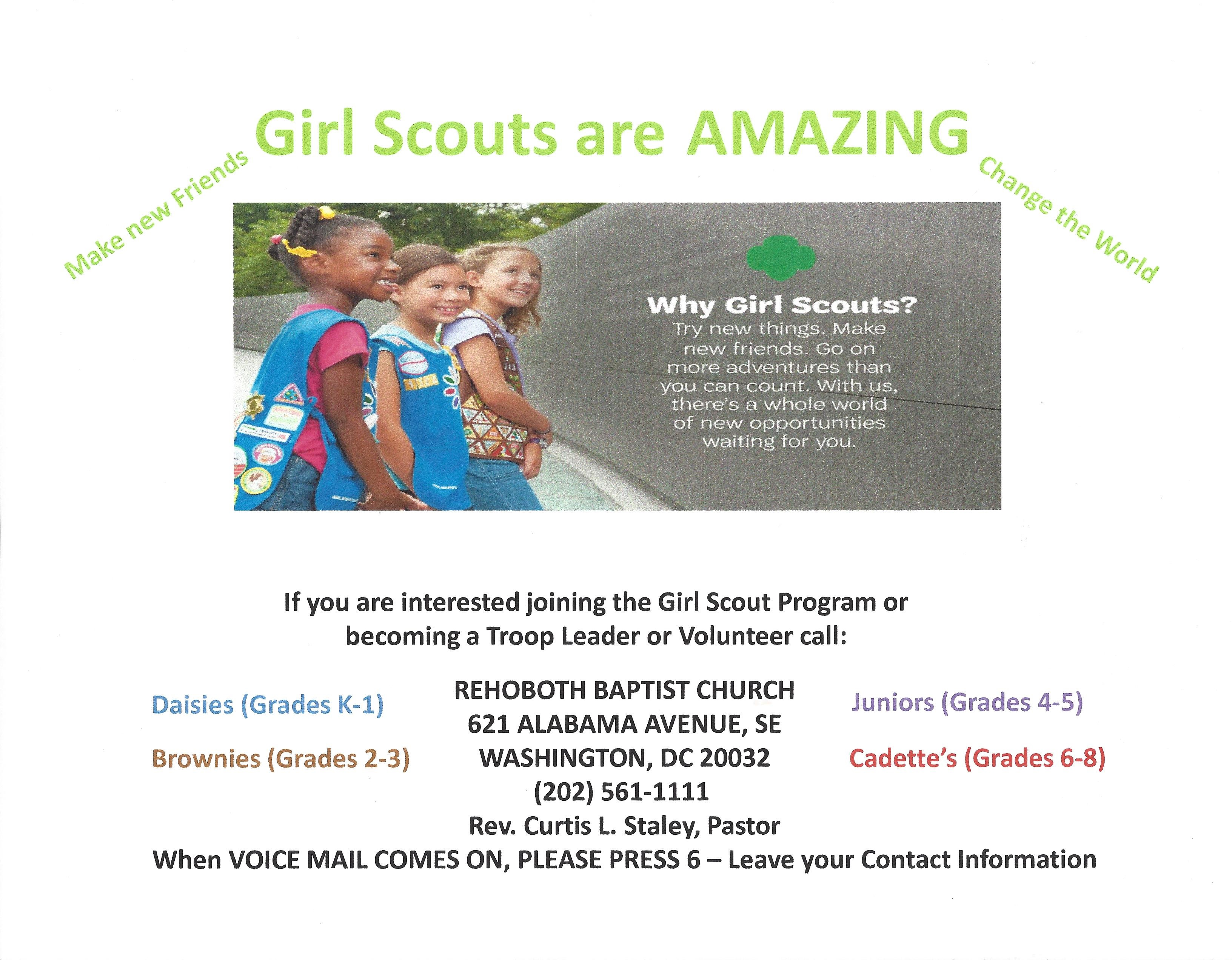 GirlScoutsProgram2016
